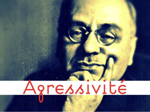 Lexique Agressivité