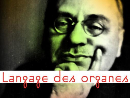 Lexique Langage des Organes