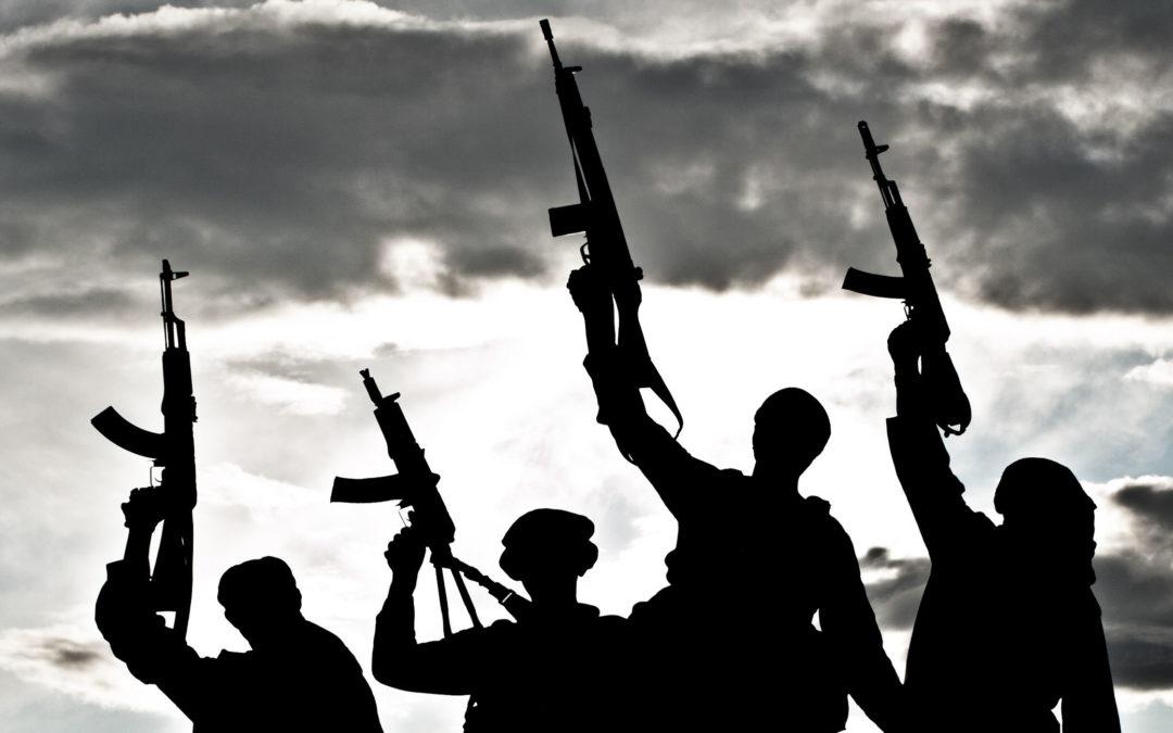 Adolescence, violence et terrorisme : la genèse de la haine